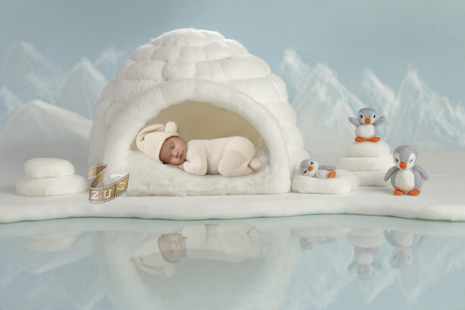 igloo-sell-e1571258133938