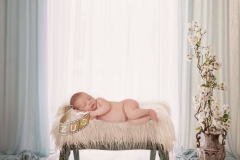 #babyshoot #newbornshoot